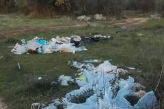 """Il Comune di Molfetta ascolta i residenti, ecco il """"nuovo"""" centro di raccolta dei rifiuti"""