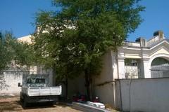 Museo del Pulo, si tenta la qualificazione delle aree esterne della Casina Cappelluti