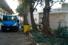 Continua la manutenzione del Cimitero di Molfetta