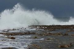 Forte vento per le prossime ore: diramata allerta meteo
