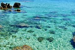 Tra Covid e Green pass, 1 italiano su 3 sceglie le vacanze in regione