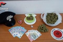 Trasportavano la droga in taxi, arrestati un 33enne e un 21enne di Molfetta