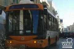A dicembre mezzi pubblici gratis a Molfetta