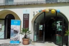Mercoledì 8 marzo ingresso gratuito per le donne al Museo Civico Archeologico del Pulo