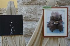 Via San Benedetto, la strada dell'arte, alla sua sedicesima edizione