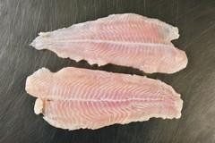 Pangasio del Mekong venduto come cernia: il 75% del pesce è estero