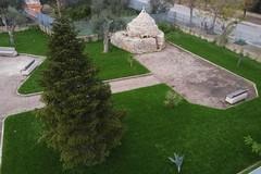 Riqualificato un altro spazio verde a Molfetta: l'annuncio di Minervini