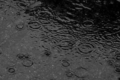 Meteo instabile nel weekend a Molfetta