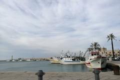 Protesta della marineria,Alleanza cooperative e Federpesca scrivono alla Regione Puglia