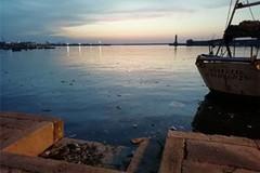 Cinque stelle: «Soldi dalla regione per la pulizia ma il porto di Molfetta è sporco»