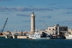 «Si intervenga sui tir che attraversano Molfetta per raggiungere il porto»