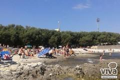 Dall'ambiente all'attenzione per i disabili, come cambia la spiaggia Prima Cala