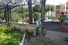 Parco di Levante ripulito dai cittadini. Ma c'è il problema sicurezza