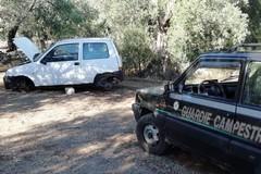 Auto rubata e cannibalizzata ritrovata tra Ruvo e Molfetta