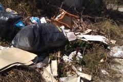 L'Anci Puglia a Emiliano: «Serve un tavolo operativo per contrastare l'abbandono dei rifiuti»