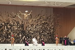 """Udienza da Papa Francesco delle Diocesi di Molfetta e Ugento: le emozioni di una giornata sulle """"Orme di don Tonino"""""""