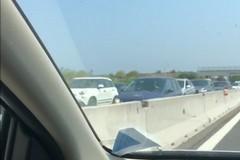 Incidente sulla 16 bis, coda e traffico rallentato da Molfetta verso Bari