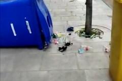 Tra i vandali dei rifiuti e gli incendi delle auto, il centro di Molfetta dimenticato?