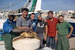 """Due """"nuove"""" tartarughe al Centro di Recupero Tartarughe Marine"""