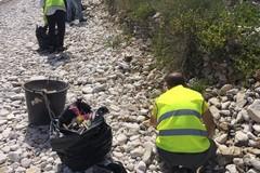 Il Lido Villaggio Nettuno e l'ASM per la pulizia di Torre Calderina