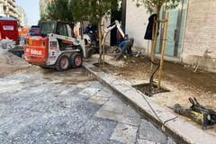 Proseguono i lavori del piano strade a Molfetta