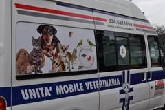 Prossimamente a Molfetta un'unità mobile veterinaria?