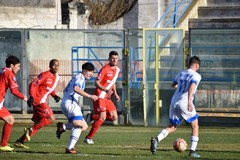 """La Molfetta Calcio sbanca il """"Fanuzzi"""" di Brindisi: seconda vittoria di fila"""