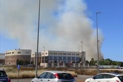 Incendio nei pressi della zona industriale di Molfetta. Sul posto i vigili del fuoco