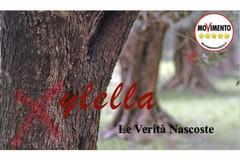 Xylella, i molfettesi Cirilli e Patimo al convegno a Bitonto
