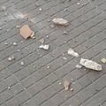Cadono pezzi di cornicione nel quartiere Madonna dei Martiri