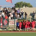 Molfetta calcio, dopo il derby si ospita l'ostico Gallipoli