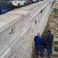 Un disabile: «Sulle spiagge di Molfetta ancora barriere architettoniche»