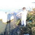 Tartaruga d'acqua dolce gettata in mare: salvata dal WWF Puglia