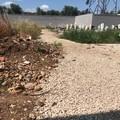 Tombe tra erbacce, materiale di scarto e attrezzi: ecco la nuova zona del cimitero di Molfetta