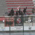 Cinque gol nel derby: la Molfetta Calcio ritrova vittoria, punti e terzo posto