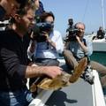 Nasce Adrionet, una svolta epocale per la tutela delle tartarughe
