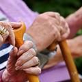 Buoni Servizio Anziani e Disabili, posticipato l'avvio delle domande a Molfetta