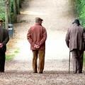 Nasce Alzheimer Personal Mind Trainer