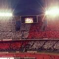 Bari calcio, la carica dei 60mila del San Nicola