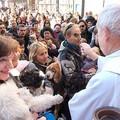 Nel pomeriggio di oggi la benedizione degli animali a Molfetta