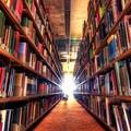 La biblioteca comunale di Molfetta si sposta in via Carnicella: il 18 ottobre la riapertura