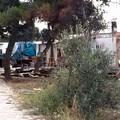 Rinascere Molfetta: «Sgombero campo rom, solo una grande operazione di distrazione di massa»