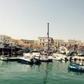 Spiaggia Maddalena, il Comitato: «Incontro pubblico sul futuro dell'area»