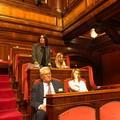 Manovra, Carmela Minuto: «Sud tradito»
