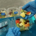 La frutta tagliata e pronta da mangiare di F.lli Orsero sarà prodotta a Molfetta