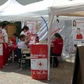 """Sette nuovi """"specialisti"""" in Croce Rossa"""