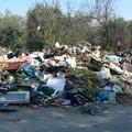 Troppi rifiuti abbandonati nelle campagne