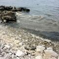 Ancora schiuma biancastra e maleodorante in mare