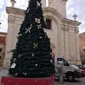 """Il Natale a Molfetta e quella volta che la  """"Santa Allegrezza """" fu cantata davanti al Papa"""