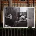 Vandalizzata una foto della mostra dedicata alla Quaresima a Molfetta